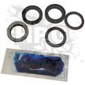 PARTS KIT, STEERING GEAR (PITMAN SHAFT SEAL)