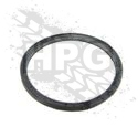 SEAL, O-RING (OIL FILTER ADAPTER) {SMALL}