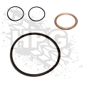 KIT, RESEAL (OIL FILTER ADAPTER)